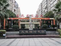 宁乡大道通程大酒店边上 玉龙国际花园大一居精装出售